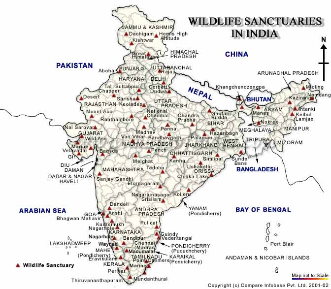 Jungle Map of IndiaJungle Tourist Map of IndiaJungle Travel Map – Tourist Map Of India