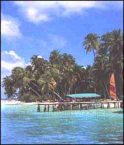 Beach View in Maldives