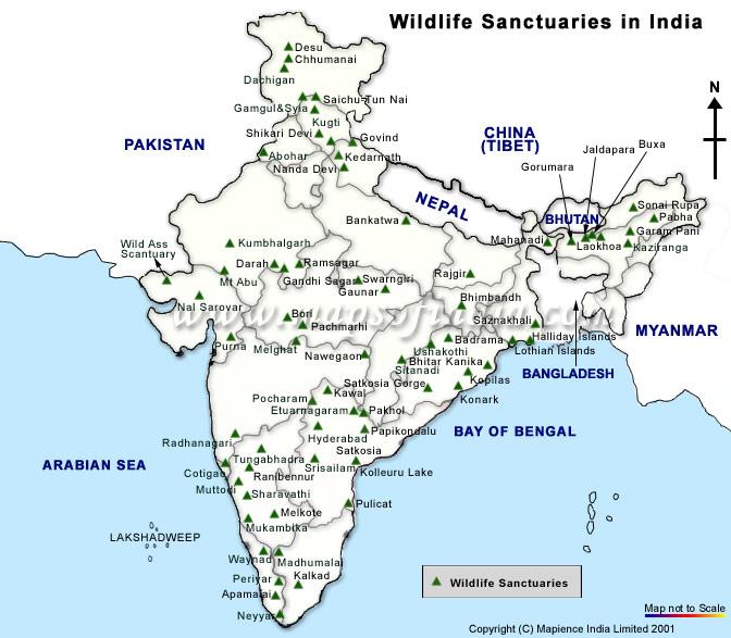 Wildlife Sanctuaries In India Map Map of India Wildlife Sanctuaries, Wildlife Sanctuaries Map of  Wildlife Sanctuaries In India Map
